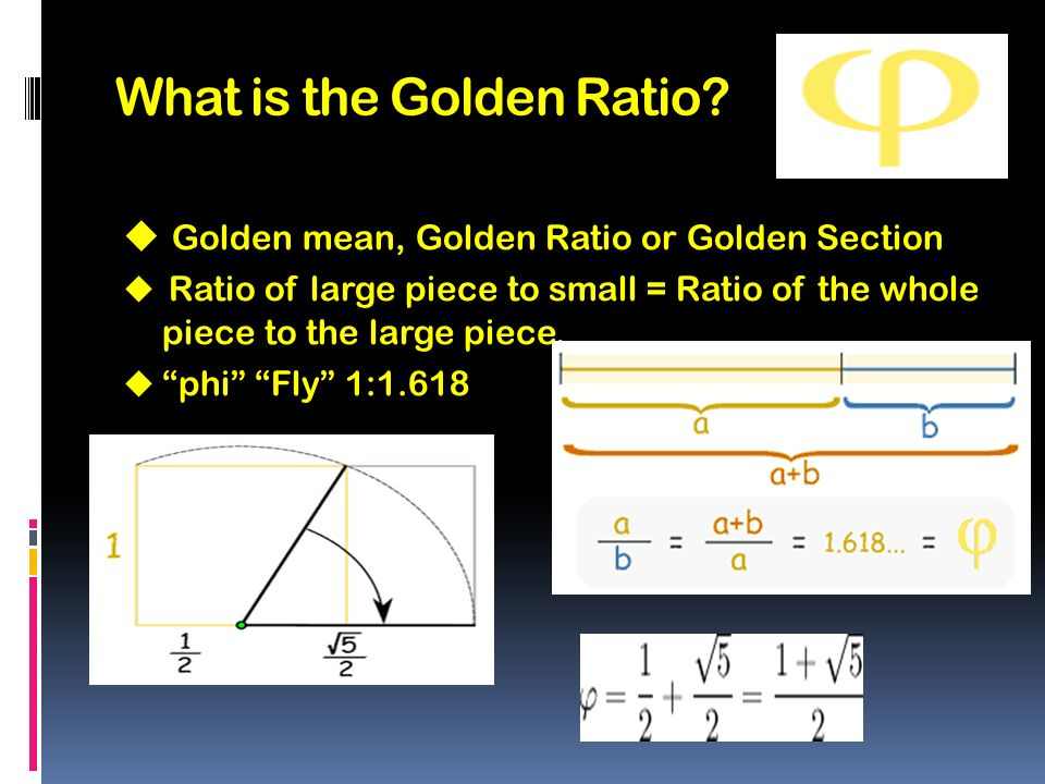 fashion and the golden ratio ppt video online download
