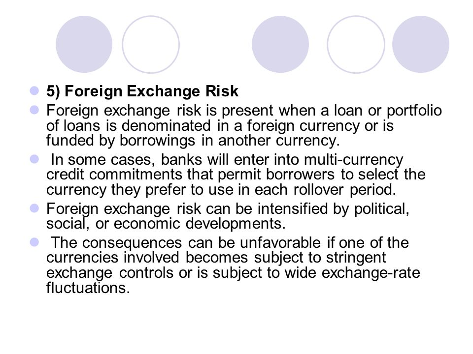 5) Foreign Exchange Risk