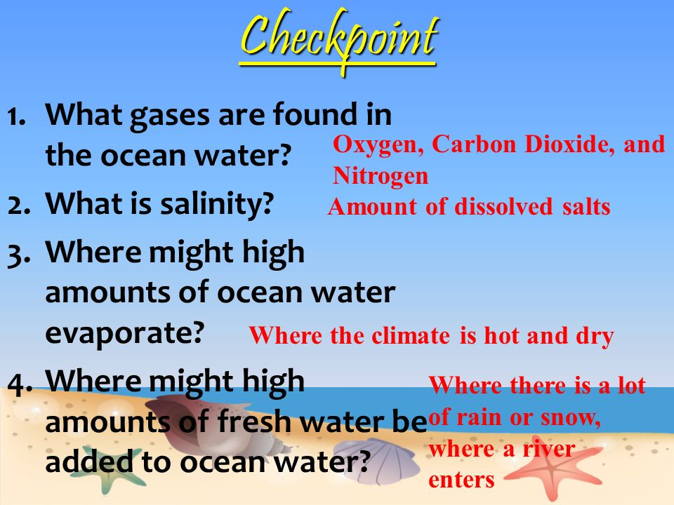 Checkpoint What gases are found in the ocean water What is salinity