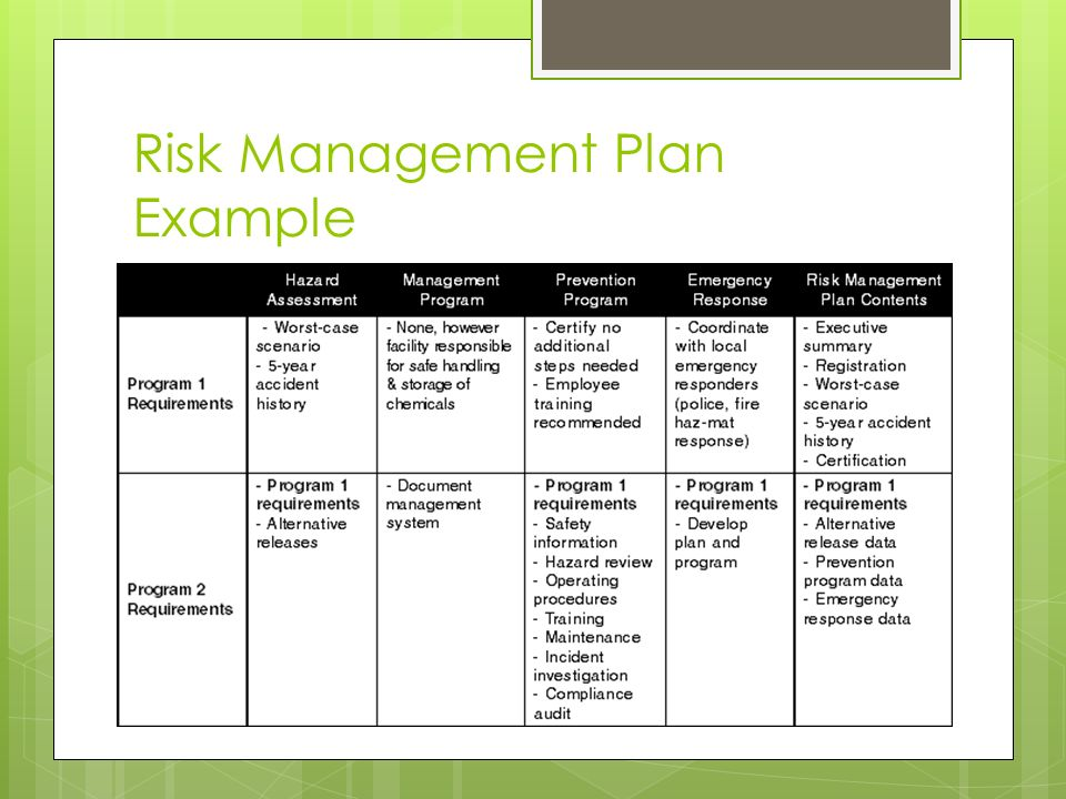 risk management plan example