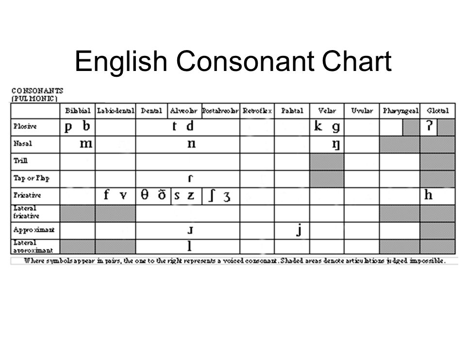 phonology and english classes These great esl activities are here to help students learn it all  if you aren't  already familiar with the phonemic chart, then you might find it helpful because it .