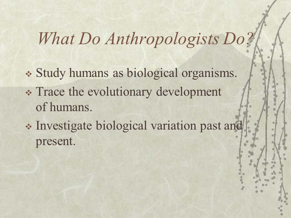 What does an Anthropologist do? ‐ CareerExplorer