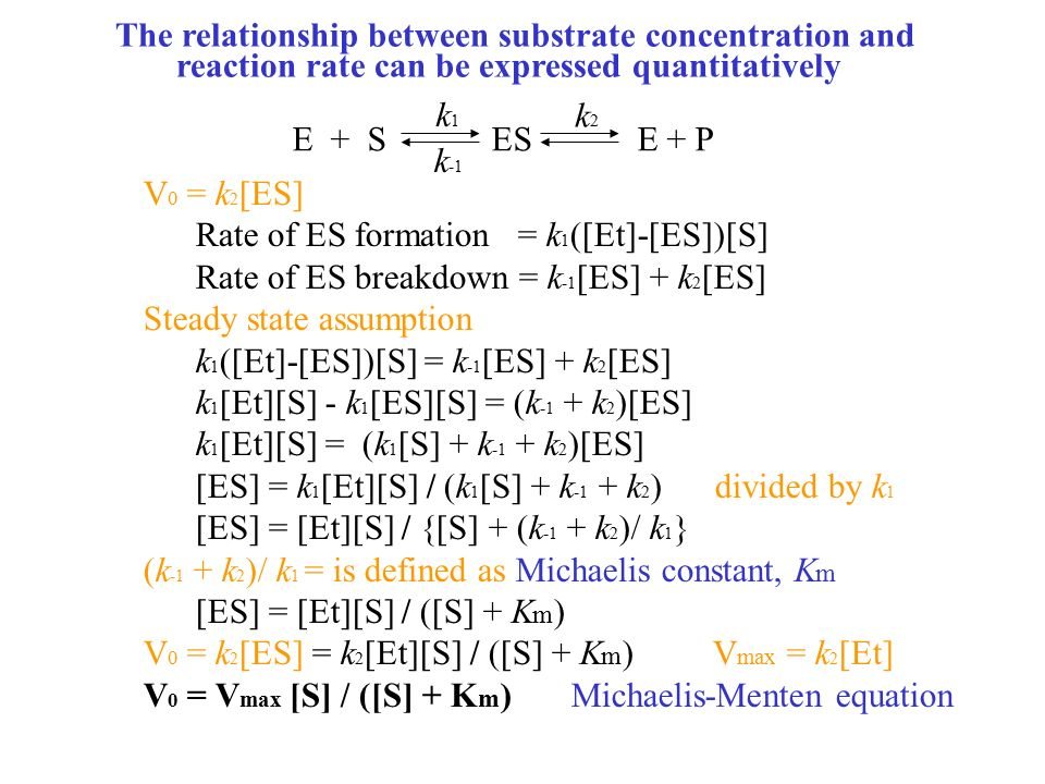 relationship between substrate concentration enzyme catalyzed reaction