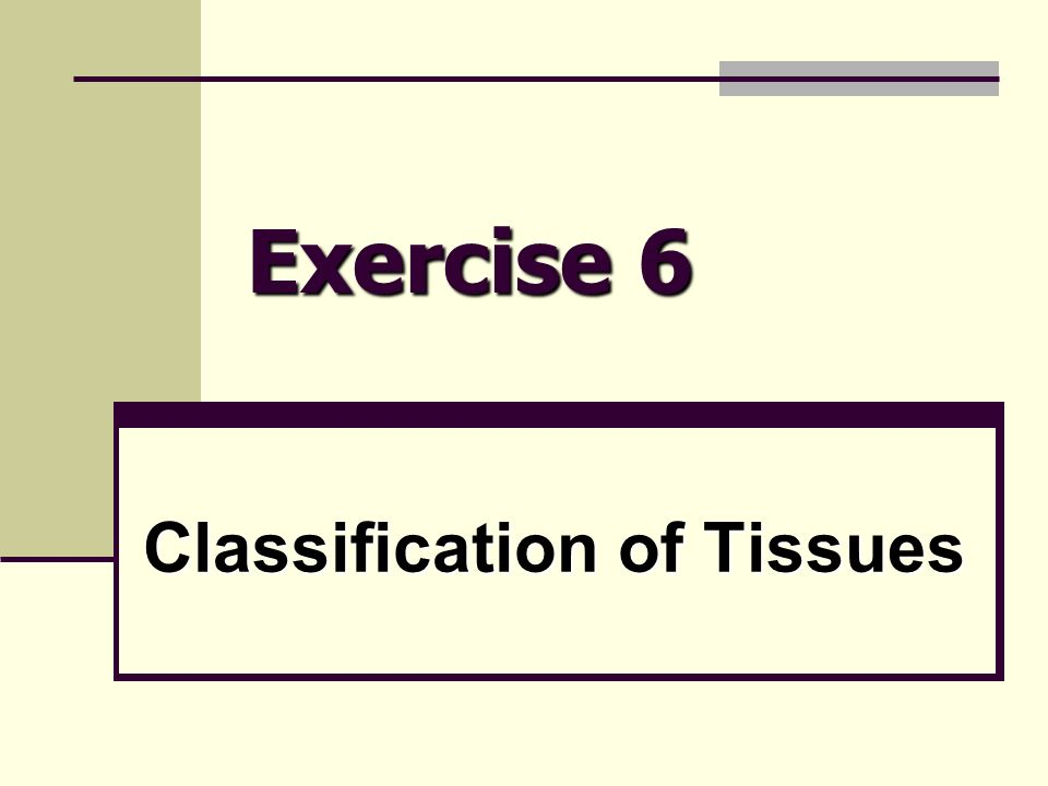 Classification of Tissues - ppt video online download
