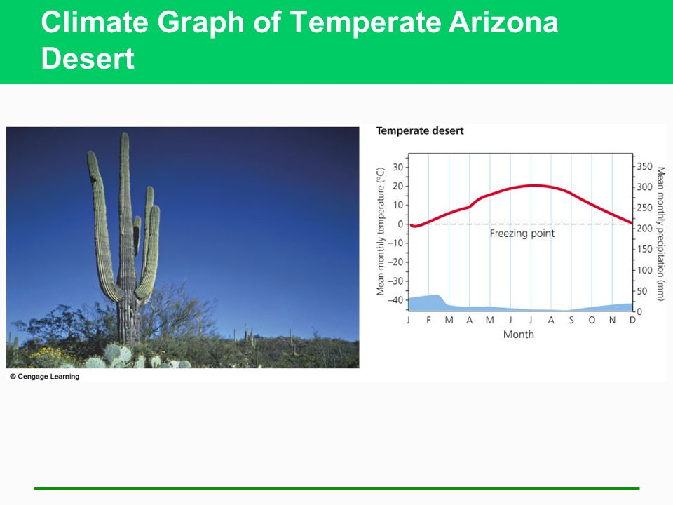 an overview of the climate and temperature of deserts in northern chile (climate and weather in california those fleeing the cold of winter in the northern usa will or to warm up take a trip to the desert weather in california.