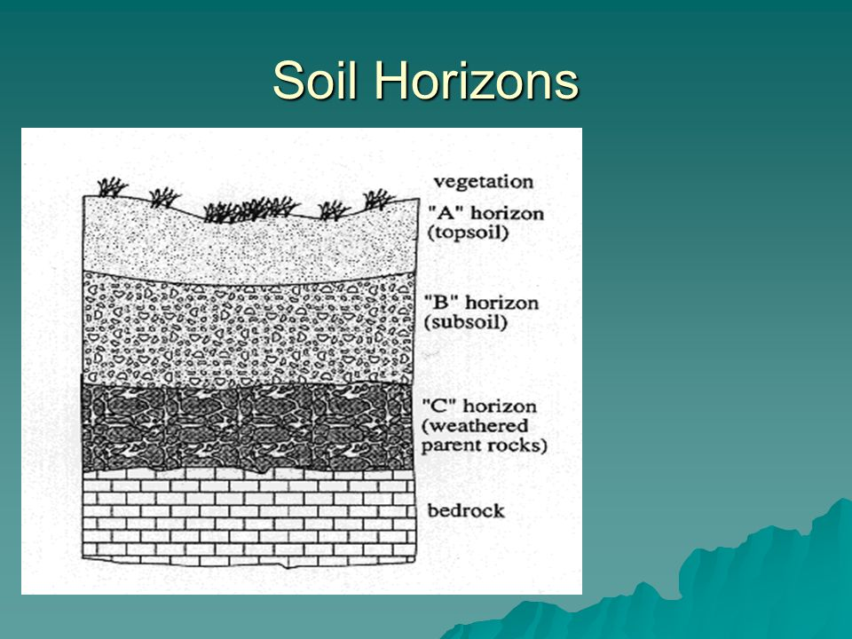 12 2 soil key ideas soil is made of weathered rock and for Soil horizons