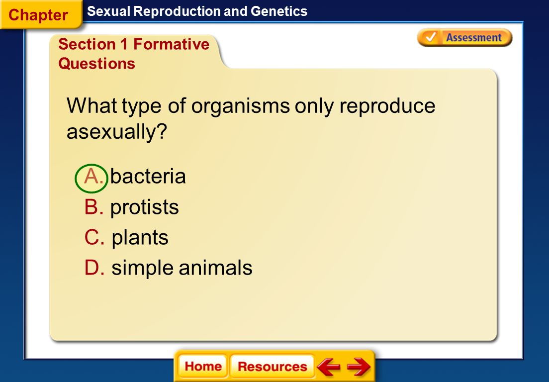 What type of organisms only reproduce asexually
