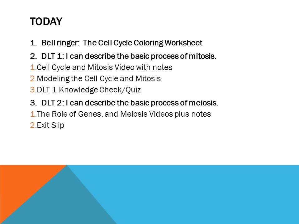JANUARY 27th 28th 2014 Unit 5 Heredity ppt download – Cell Cycle and Mitosis Worksheet