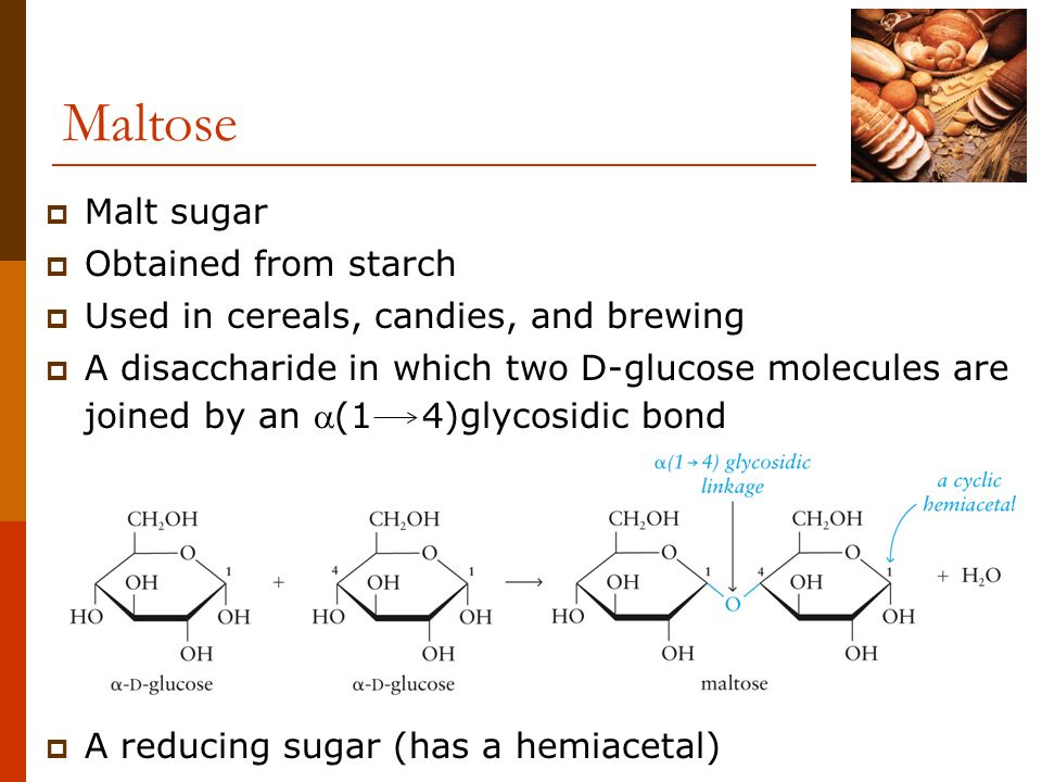 Maltose Malt sugar Obtained from starch