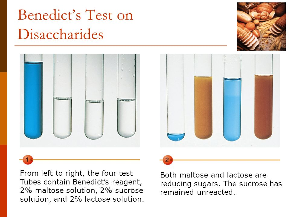 Benedict's Test on Disaccharides