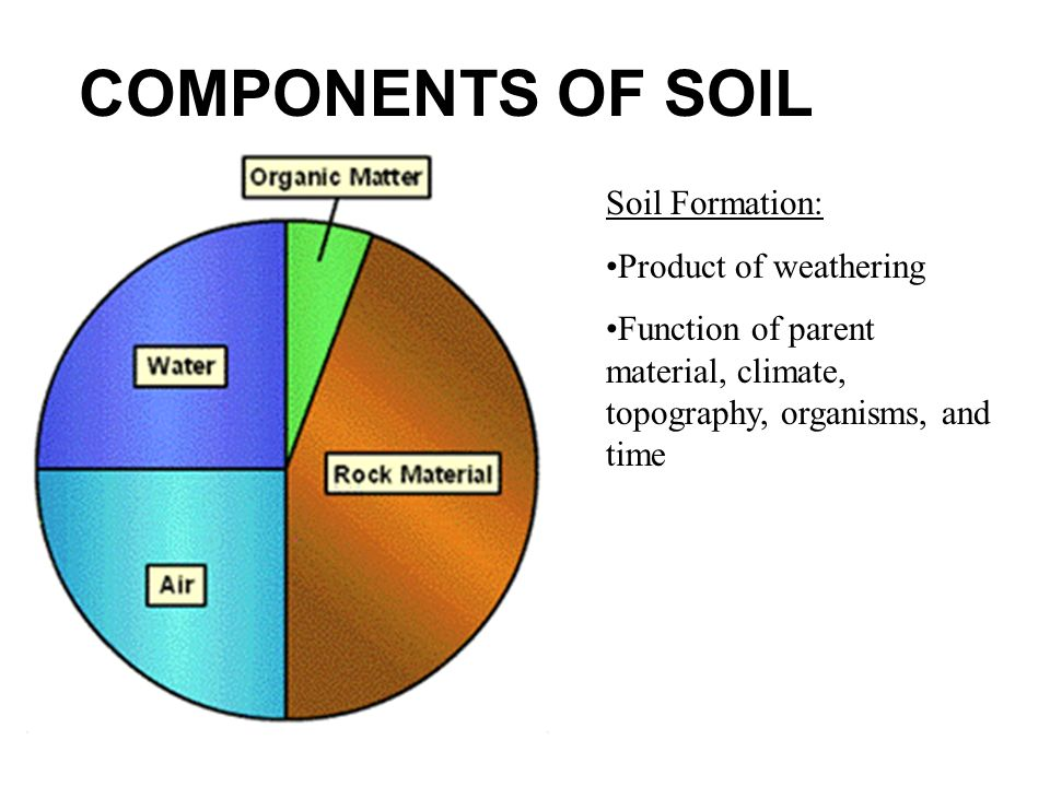 The earth s life support systems ppt video online download for Nature and composition of soil