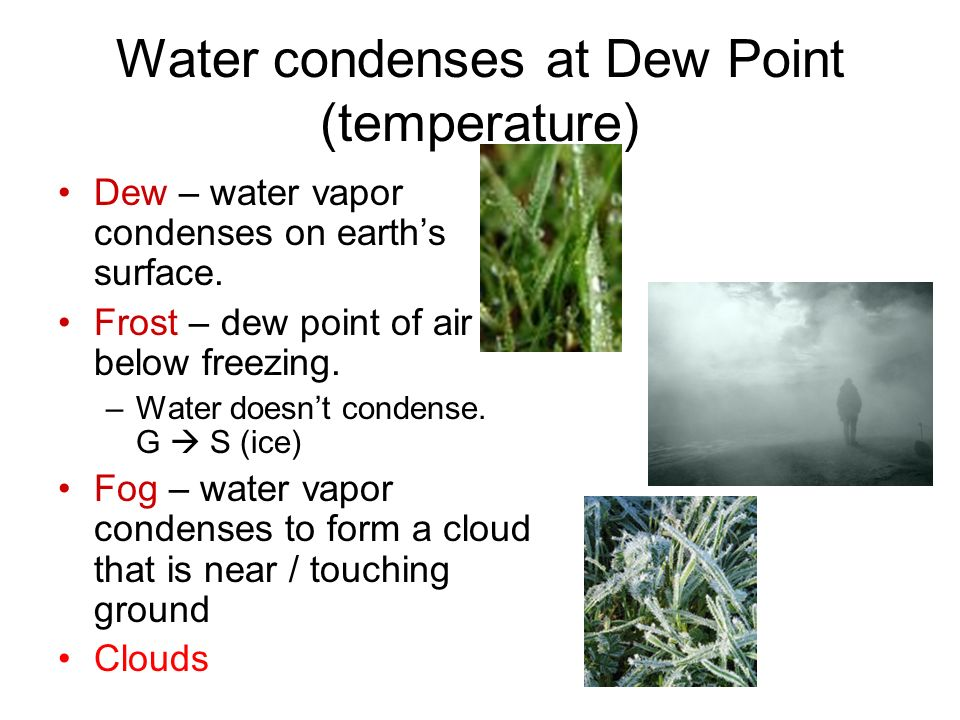 Ch Water in the Atmosphere - ppt download