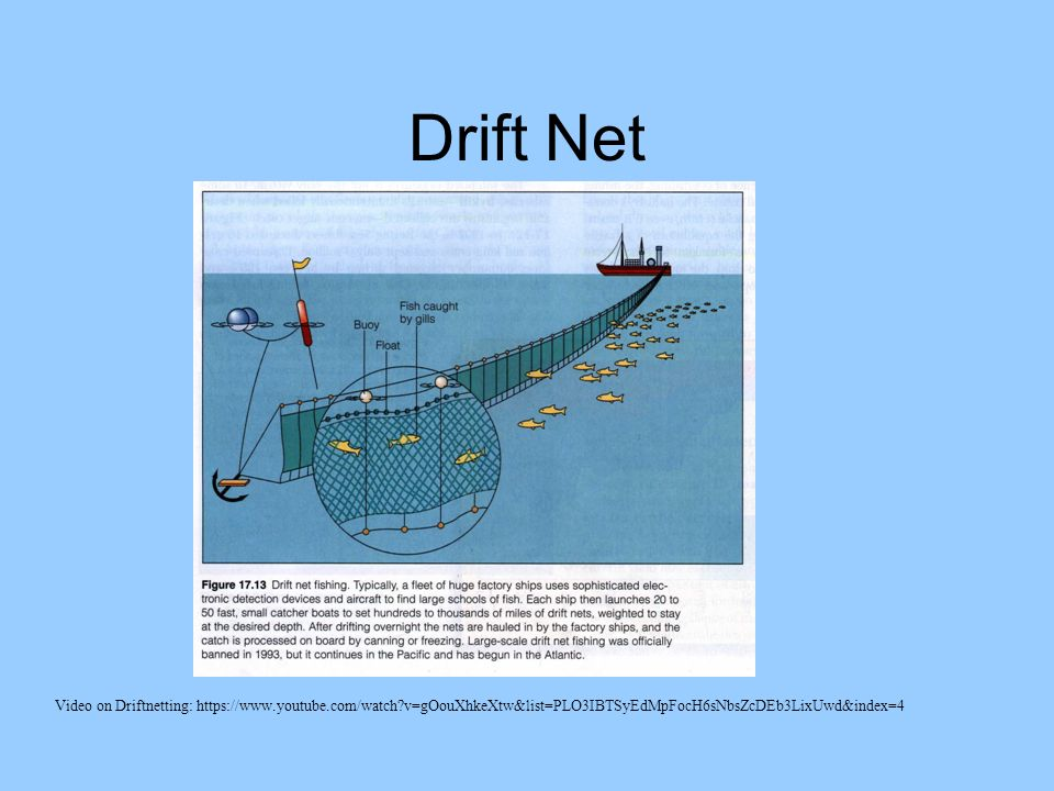 Fisheries unlike other natural resources such as oil and for Drift net fishing