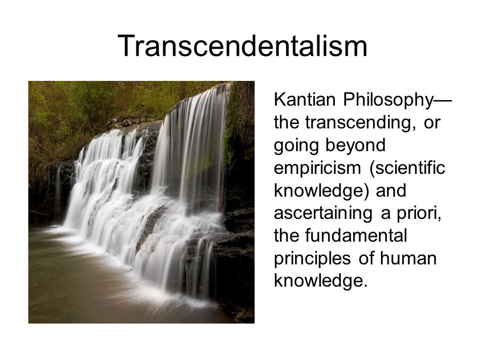 the transcendentalism movement essay Transcendentalism transcendentalism is a literary movement that believes reality only exists in the world of the spirt, and that all knowlige comes from self knowlige.