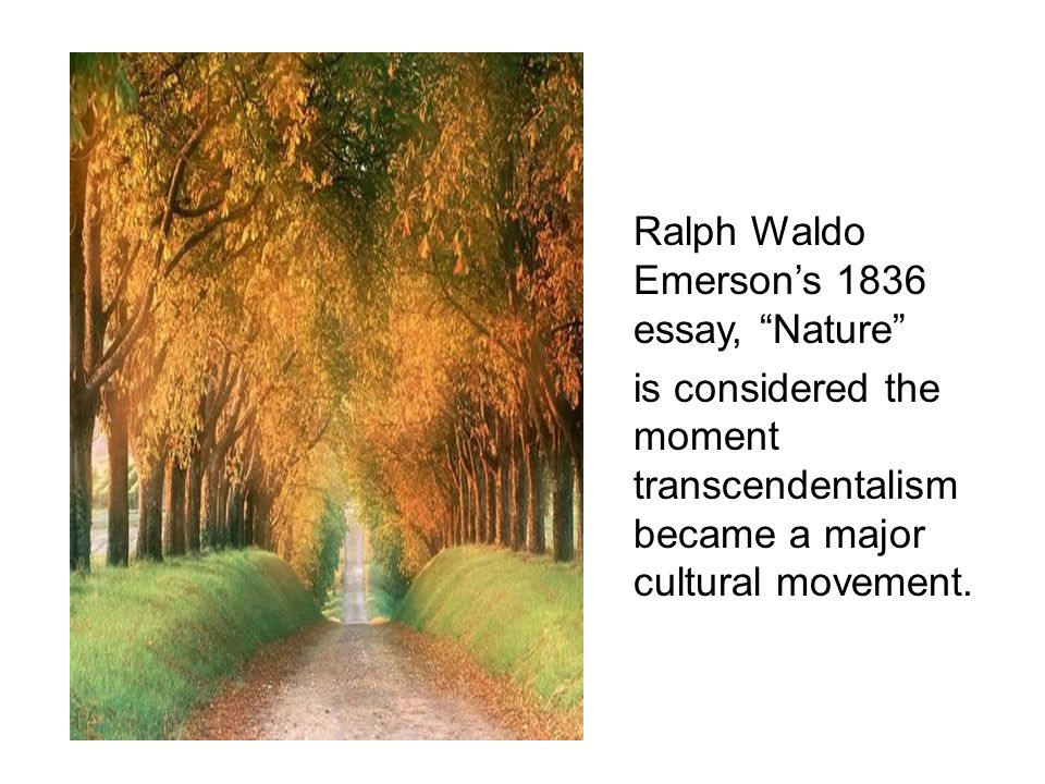 Ralph Waldo Emerson Nature Thesis Ralph Waldo Emerson  Looking For Somebody Who Can Do My Assignment also Fifth Business Essays  Synthesis Essays