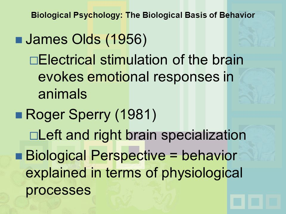 physiological basis of human behavior Chapter 3: physiological bases of human behavior chapter 3 physiological bases of human behavior introduction organism as diverse as humans and other creatures share many biological processes however, their unique behavioral capacities depend on the differences in their physiological make- up.