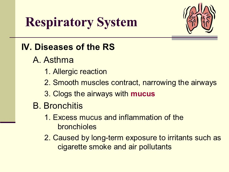 Respiratory System IV. Diseases of the RS A. Asthma B. Bronchitis