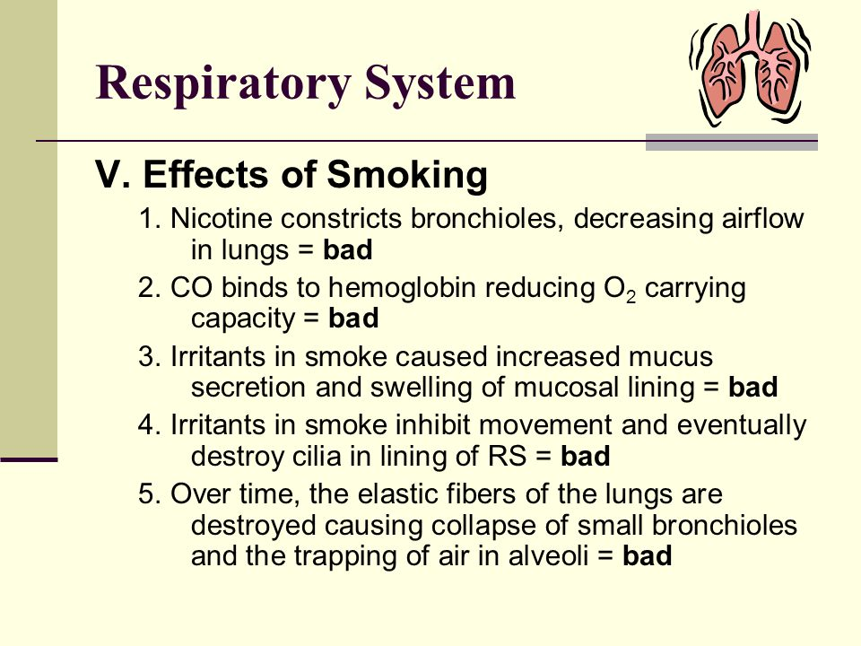 Respiratory System V. Effects of Smoking