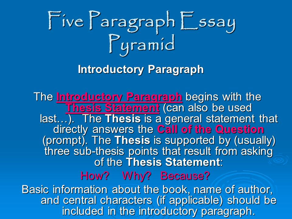 5 paragraph essay on characterization