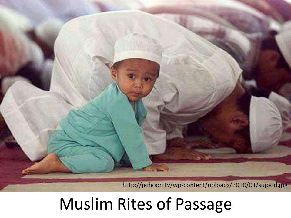 the rites of passage pdf