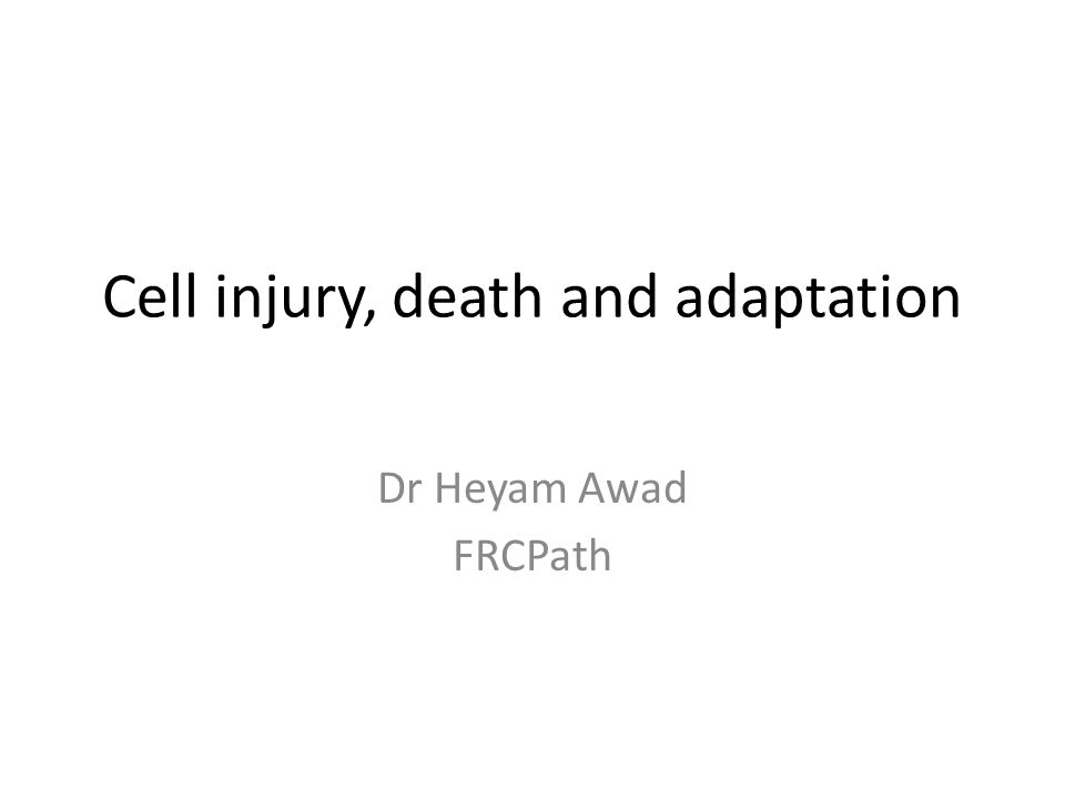 Cell injury, death and adaptation