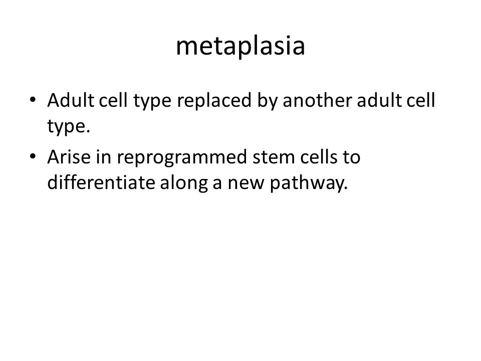 metaplasia Adult cell type replaced by another adult cell type.