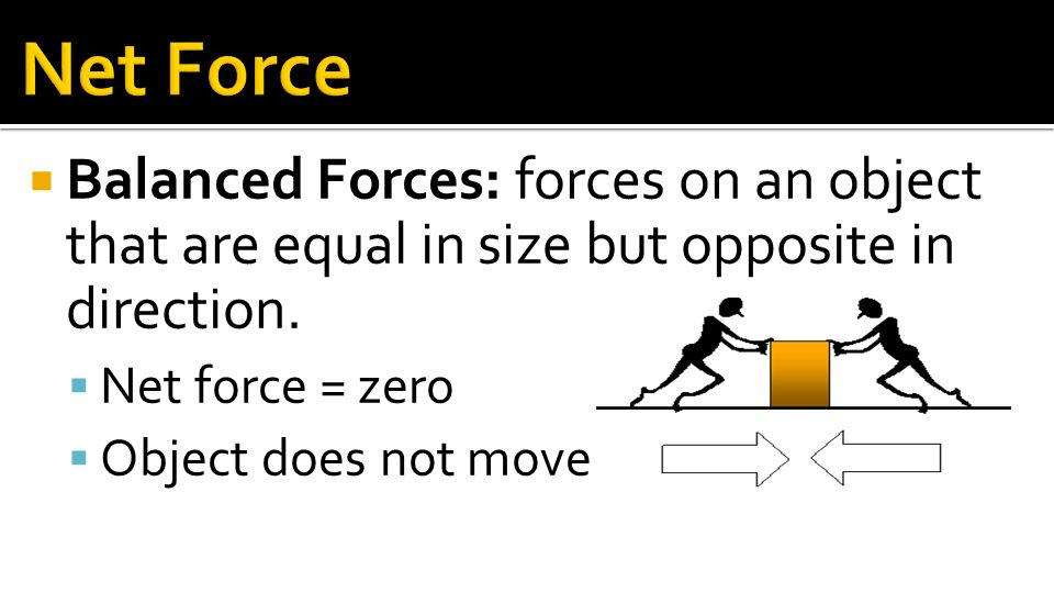 Section 3: Motion and Forces - ppt download