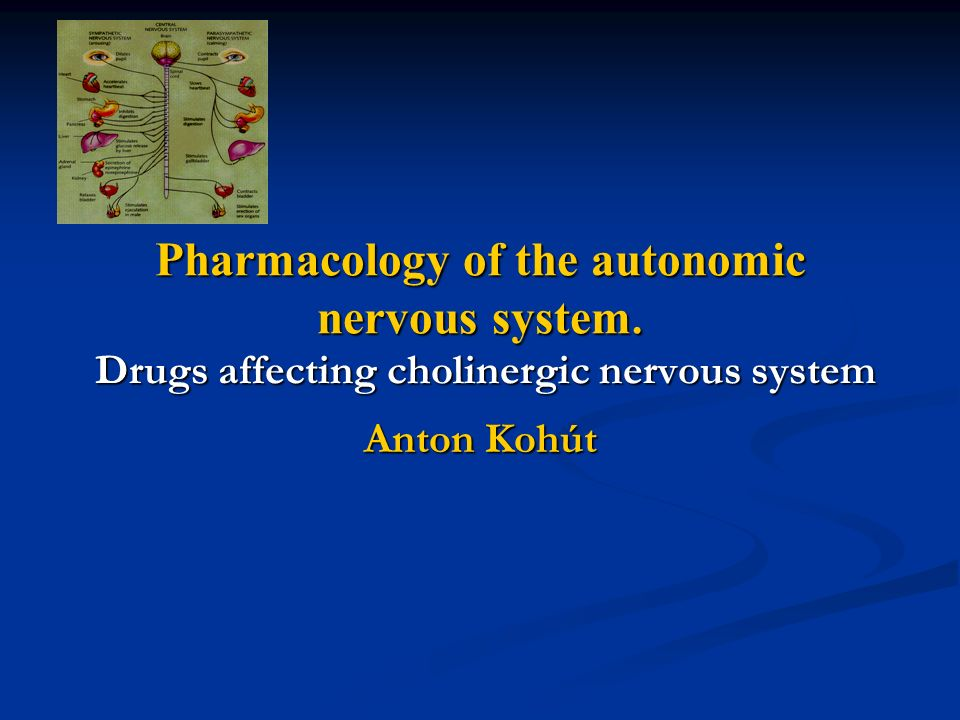 autonomic pharmacology essay questions Free essay on pharmacology: a case study in polypharmacy available totally free at echeatcom, the largest free essay community.