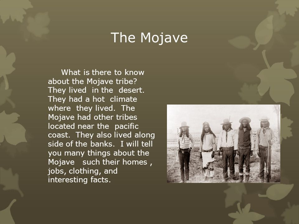 The Mojave A Native American By Caroline Drinkrow Ppt