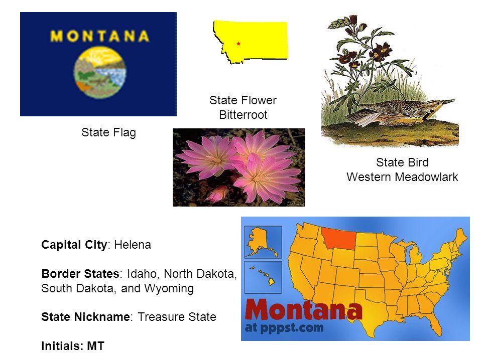 State Flower Bitterroot. State Flag. State Bird. Western Meadowlark. Capital City: