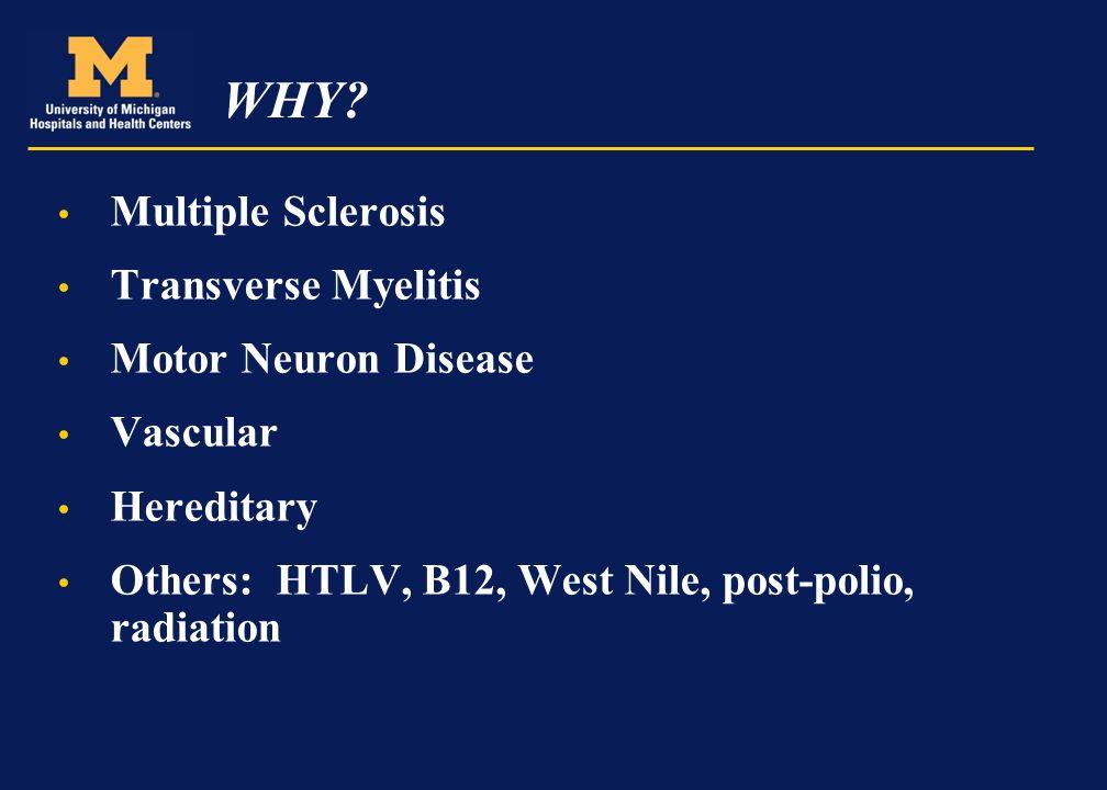 Multiple Sclerosis Upper Motor Neuron Disease