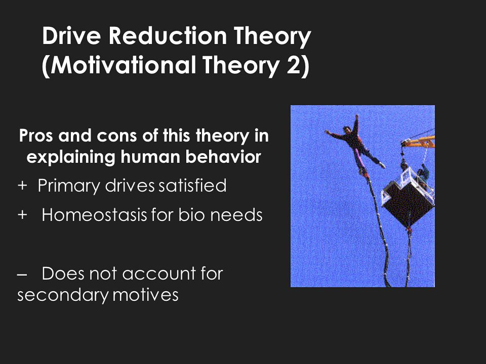 Motivational theories pros and cons