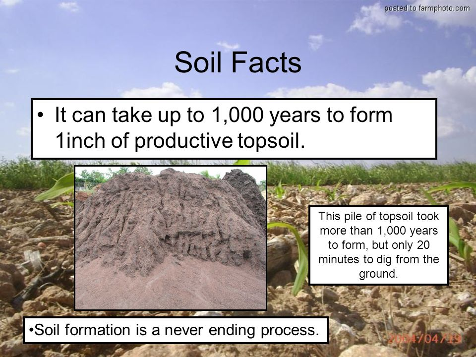 Soils a look at this valuable resource why we shouldn t for Soil details
