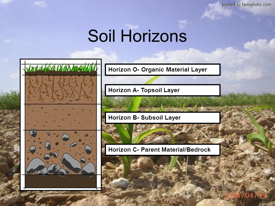 Soils a look at this valuable resource why we shouldn t for Soil horizons
