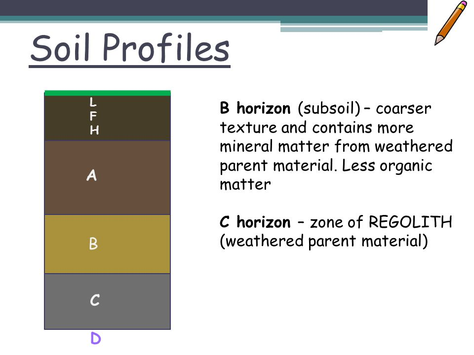 Learning objectives success criteria understand soil for What does soil contain