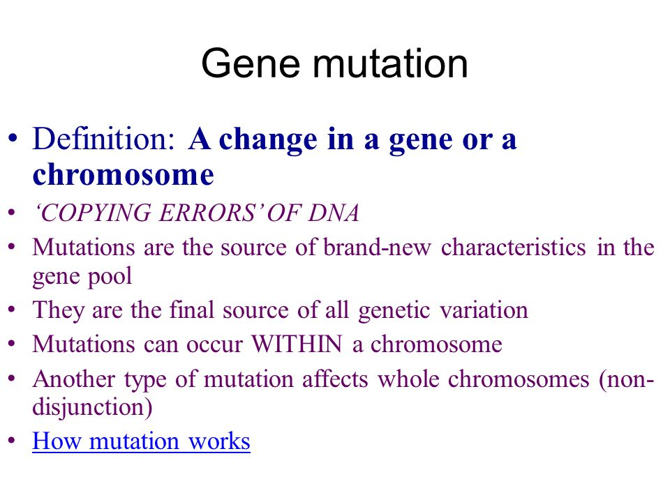 From genetics…to evolution - ppt video online download