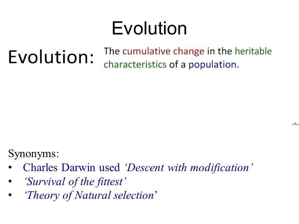an introduction to the evolution and natural selection by charles darwin Human evolution natural selection charles darwin evidence resources animals and zoology insects charles darwin's finches thoughtco, apr 17, 2018.