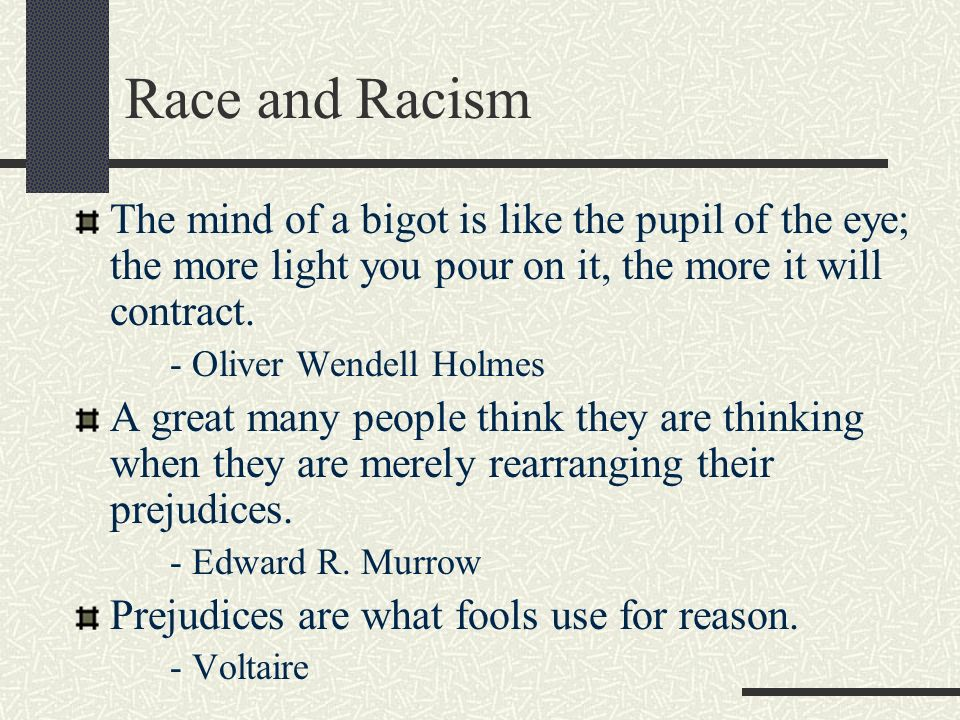 Race and Racism The mind of a bigot is like the pupil of the eye; the more light you pour on it, the more it will contract.