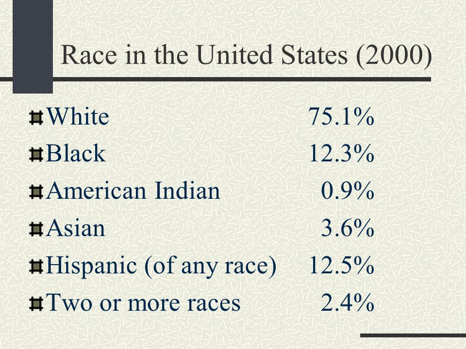 Race in the United States (2000)