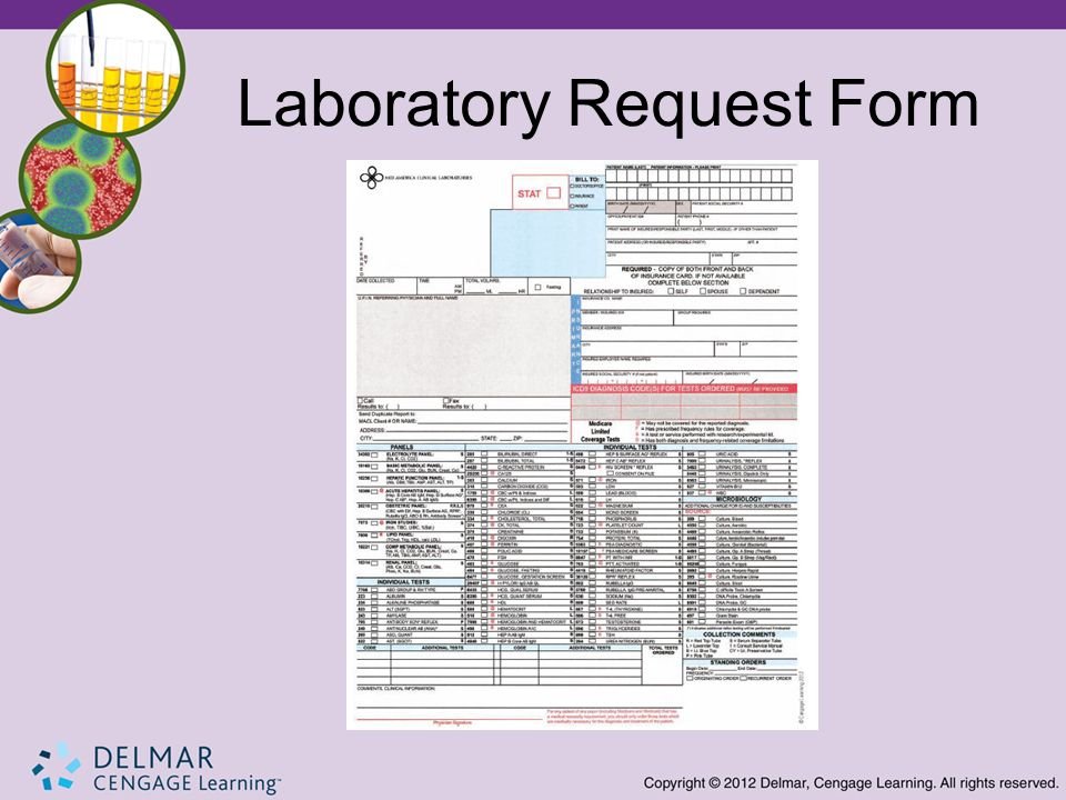 Introduction To The Clinical Laboratory Ppt Video Online