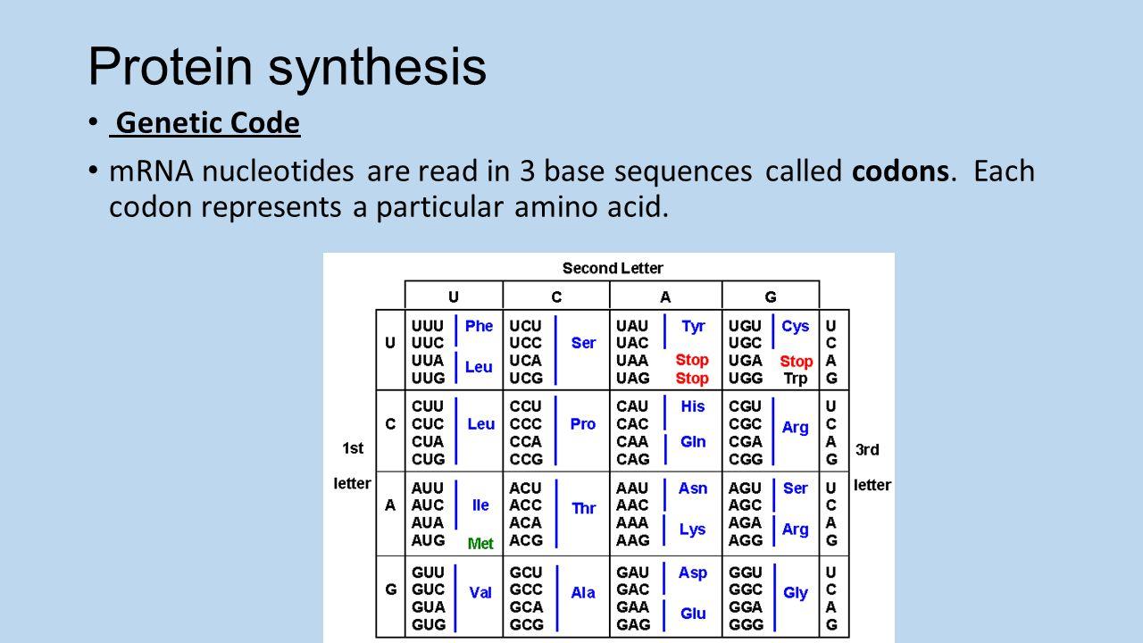 genesis synthesis Wwwgenesis-microchipcom / info@genesis-microchipcomcom genesis microchip publication preliminary data sheet gm2121 413 clock synthesis.