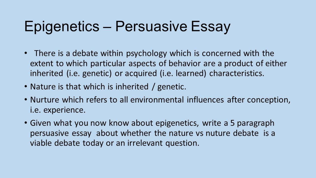 what is epigenetics essay