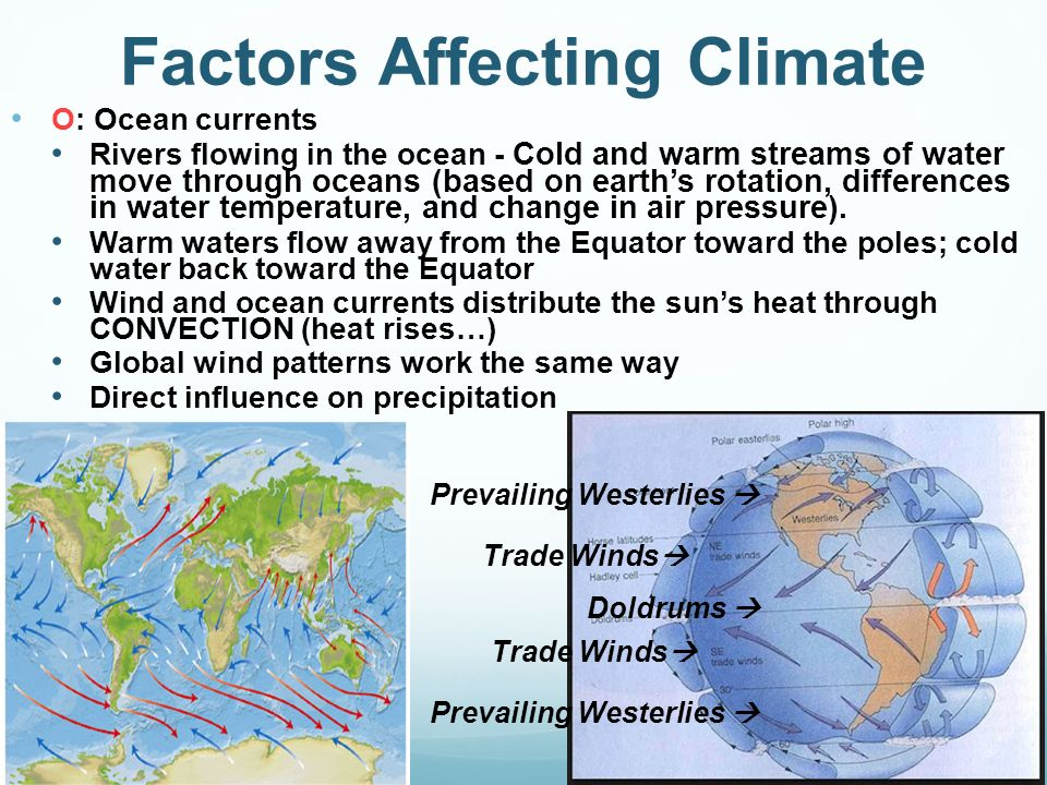Factors Affecting Climate Custom Paper Academic Writing Service