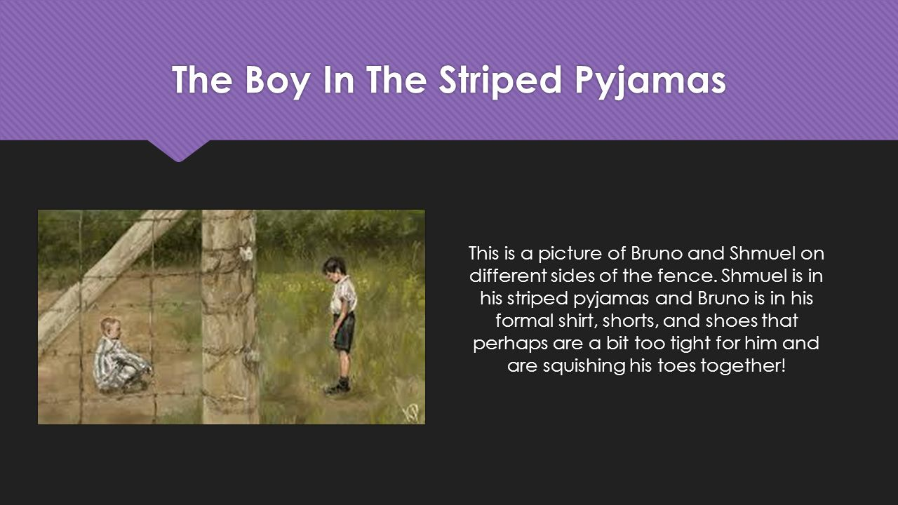 The Boy in the Striped Pyjamas Essay Samples