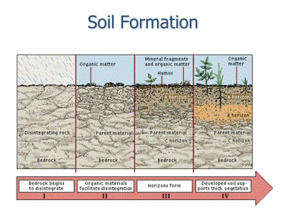 Weathering erosion deposition and landscapes ppt for Origin and formation of soil