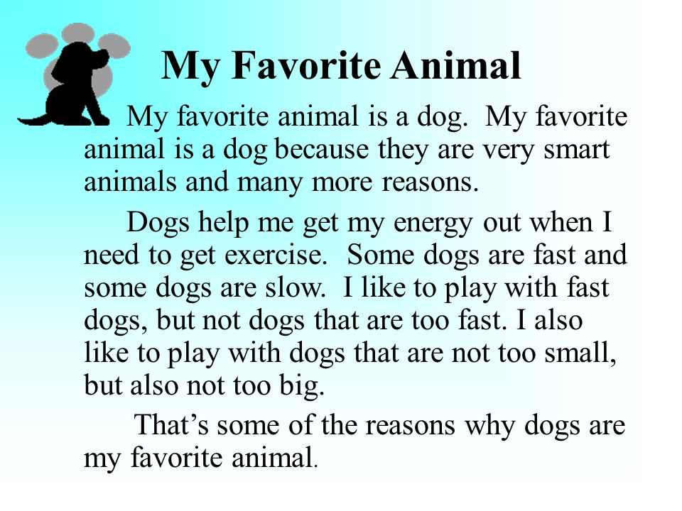 My Favorite Animal Is a ….