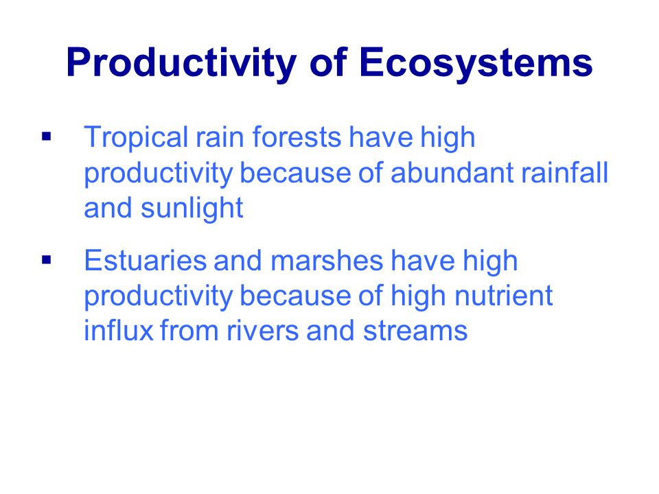 Productivity of Ecosystems