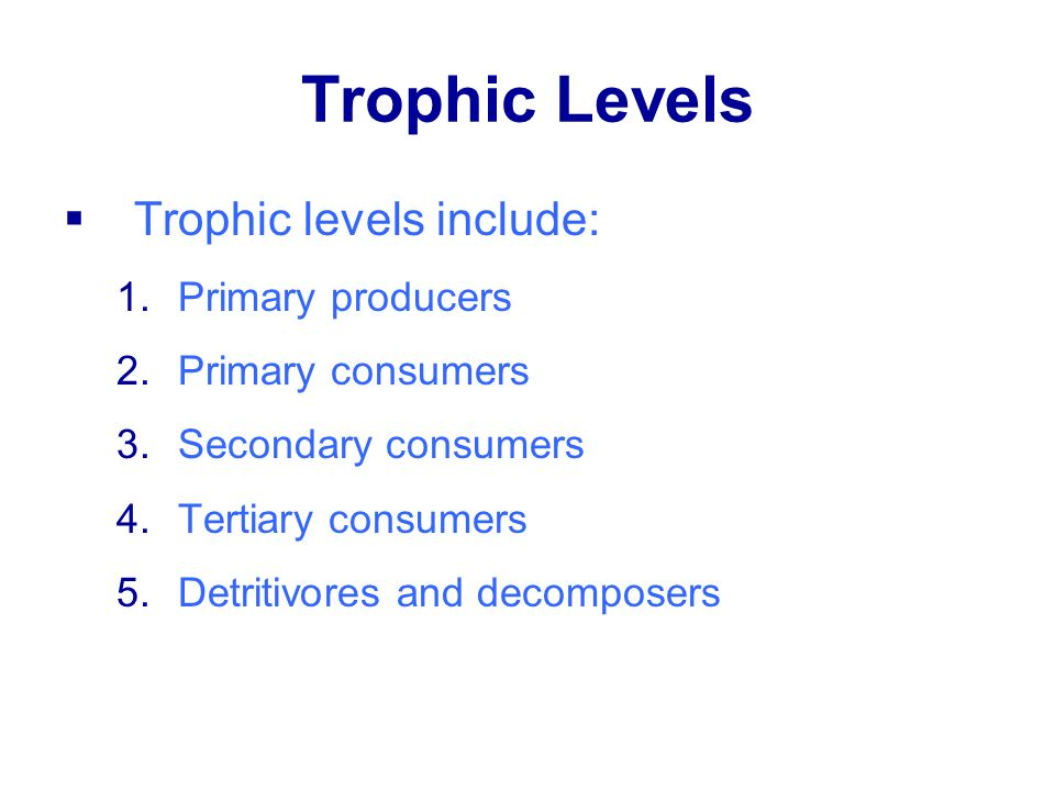 Trophic Levels Trophic levels include: Primary producers
