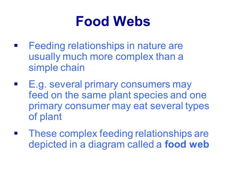 Food Webs Feeding relationships in nature are usually much more complex than a simple chain.