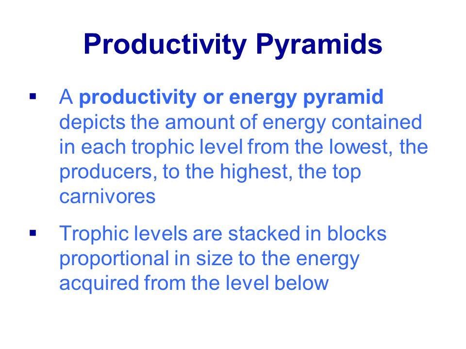 Productivity Pyramids